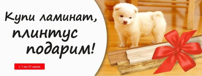 Акции в Бауцентр. Купи ламинат – Плинтус подарим в июле 2017