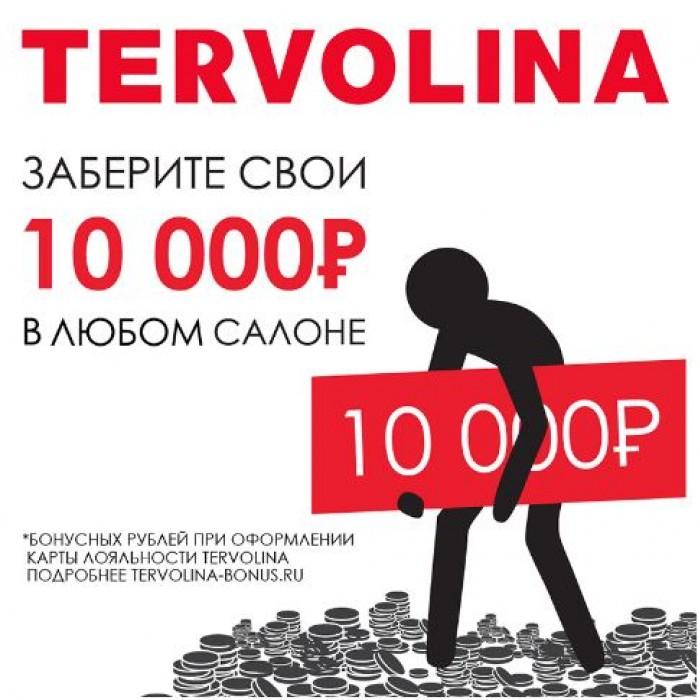 Акции Терволина октябрь 2018. Дарим 10000 рублей на покупки