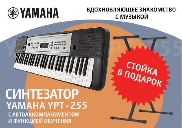ДНС: Стойка для клавиш в подарок при покупке синтезатора Yamaha