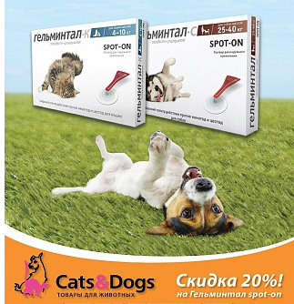Магазин CATS & DOGS, акция на анигельминитики