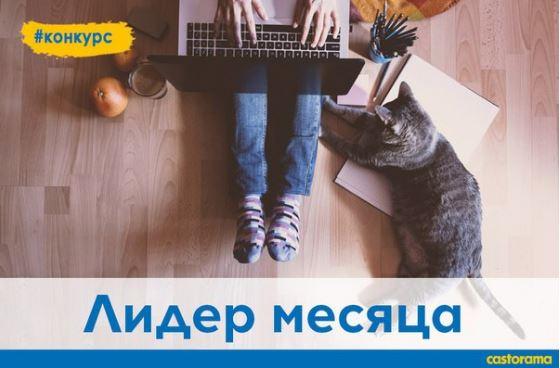 "Castorama - Конкурс ""Лидер месяца"""