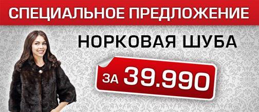 Алеф - Норка по специальной цене