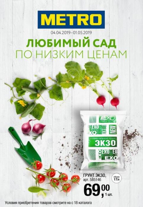 Акции МЕТРО апрель 2019. Саженцы роз и семена по супер-цене