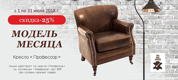 "Акции Fabian Smith июнь 2018. 25% на кресло ""Профессор"""