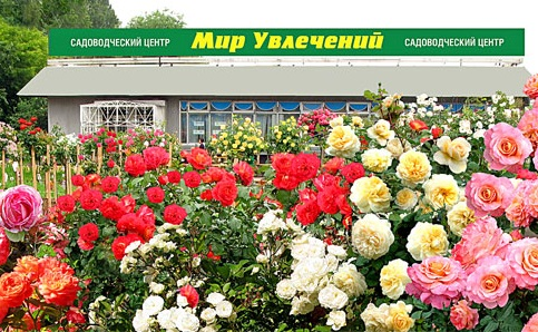 Садовый центр Мир Увлечений: Каталог 2017 официального интернет-магазина