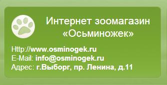 Компания Осьминожек