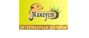 Зоомагазин Мангуст