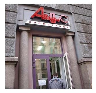 Магазин Агидис