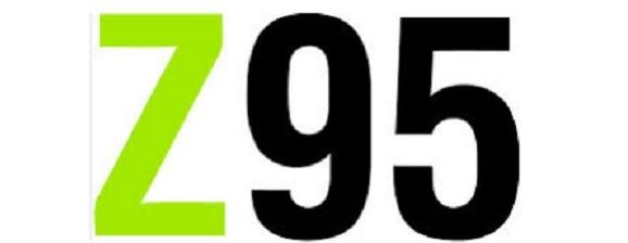 Интернет-магазин модной одежды z95, официальный сайт