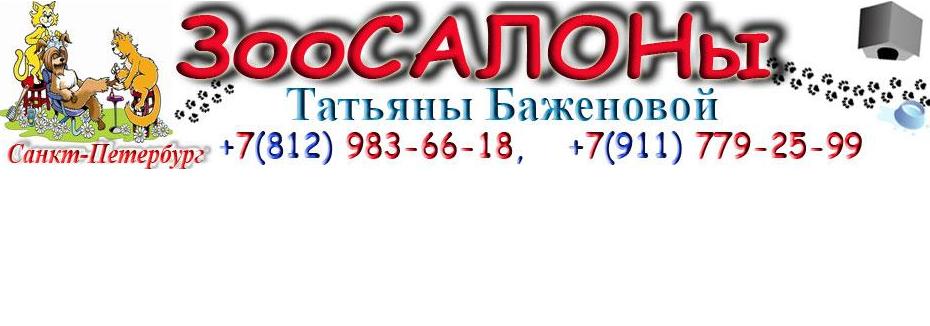 Компания Татьяны Баженовой